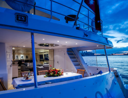 Last Minute Christmas charters still available